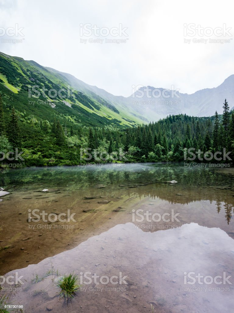 foggy mountain lake in summer photo libre de droits