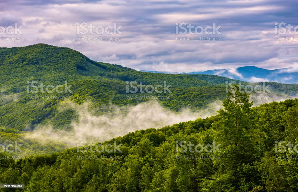 foggy mountain ridge over the forest in springtime zbiór zdjęć royalty-free