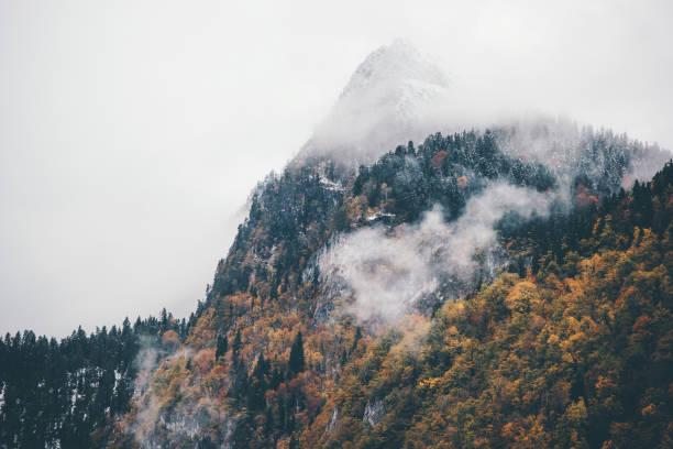 Foggy Berge mit Autumn Coniferous Forest Landscape Hintergrund ruhige malerische luftaufnahme reisen – Foto