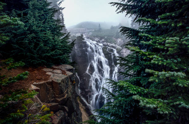 foggy myrtle falls creek - waterfall stock photos and pictures