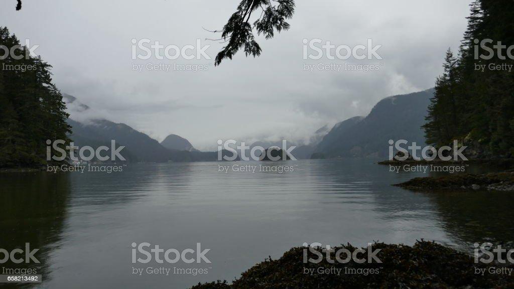 Foggy Pacific Coast stock photo