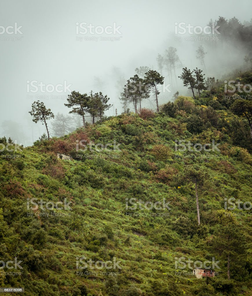 Mistige ridge in Noord-Italië royalty free stockfoto