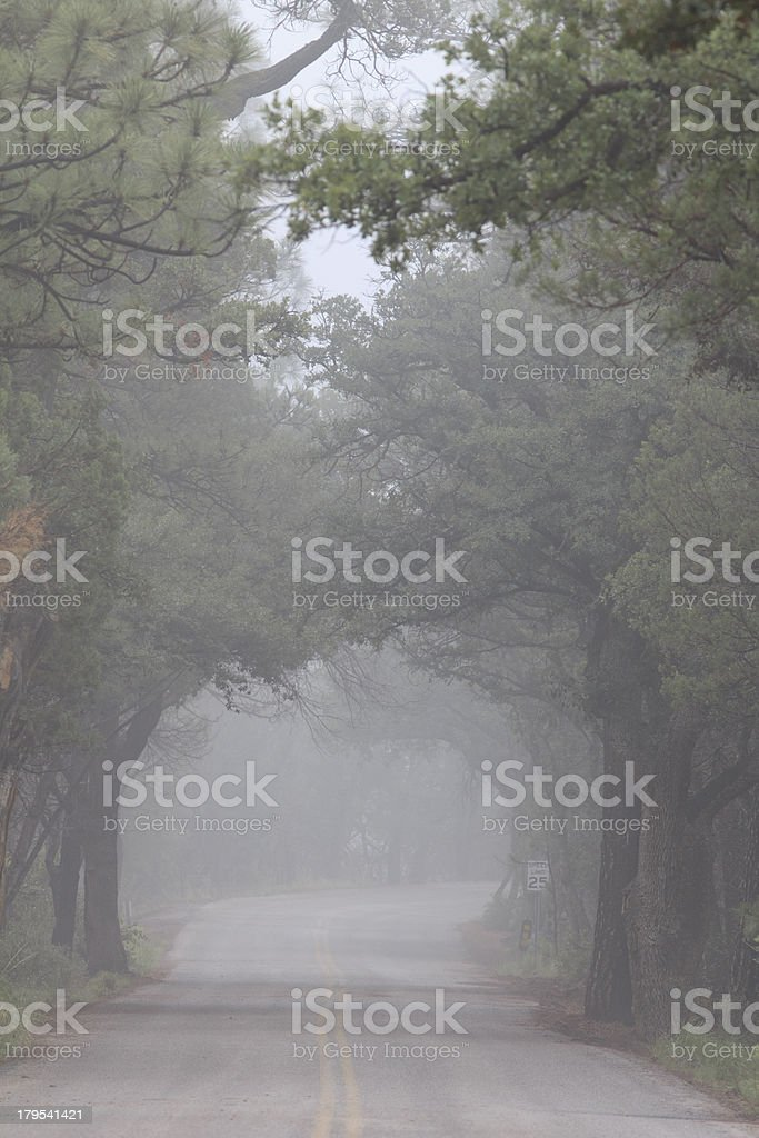 Foggy Road royalty-free stock photo