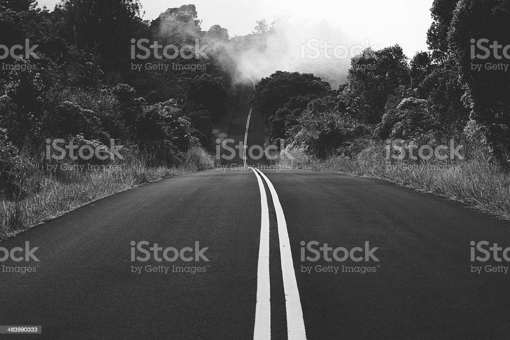 Foggy Road stock photo