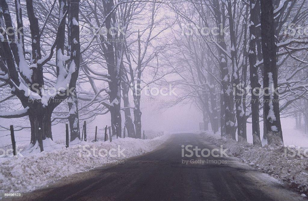 Foggy road royalty free stockfoto