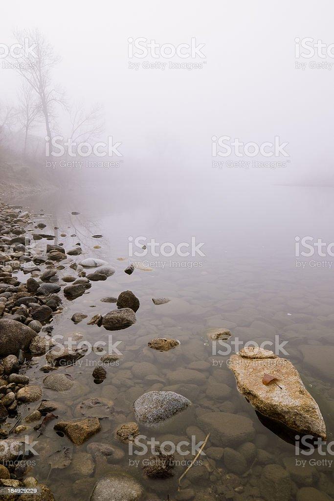 Foggy scene royalty-free stock photo