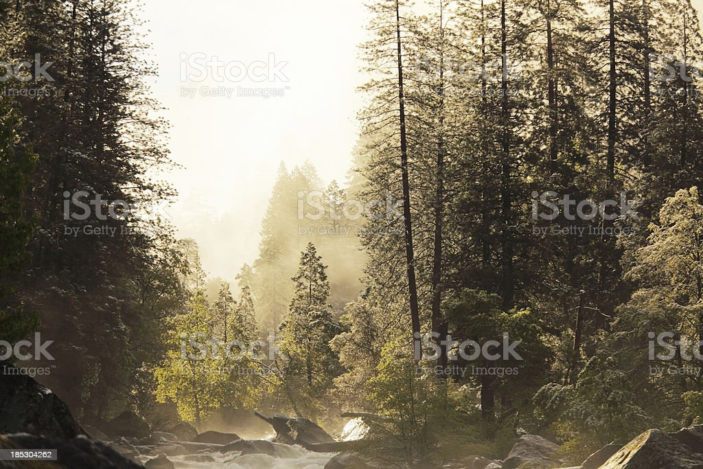 foggy sky over creek in Yosemite Park during spring royalty-free stock photo