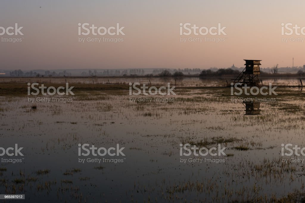 Foggy sunrise in the wetland above the marshes royalty-free stock photo