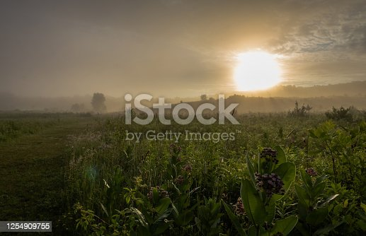 Beautiful sunrise over fields and forests in fog