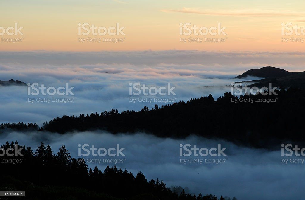 Foggy Sunset over forest stock photo