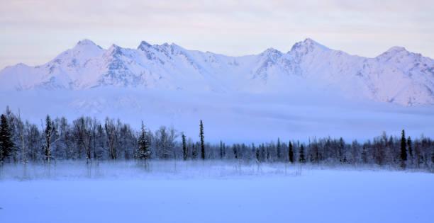 Foggy Winter Evening stock photo