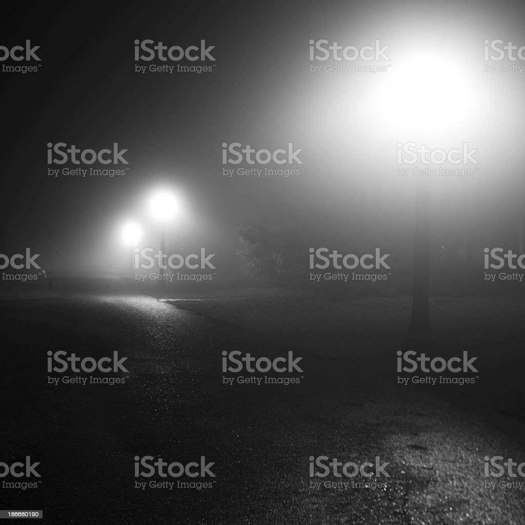 Foggy winter night in the park royalty-free stock photo