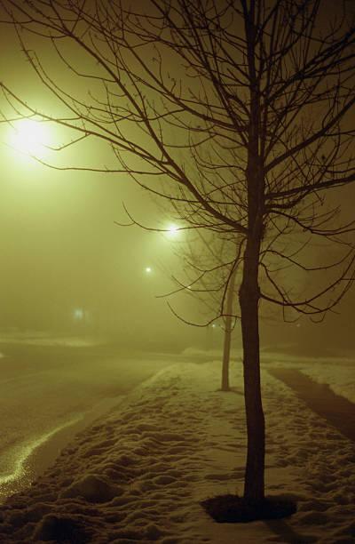 foggy winter stock photo