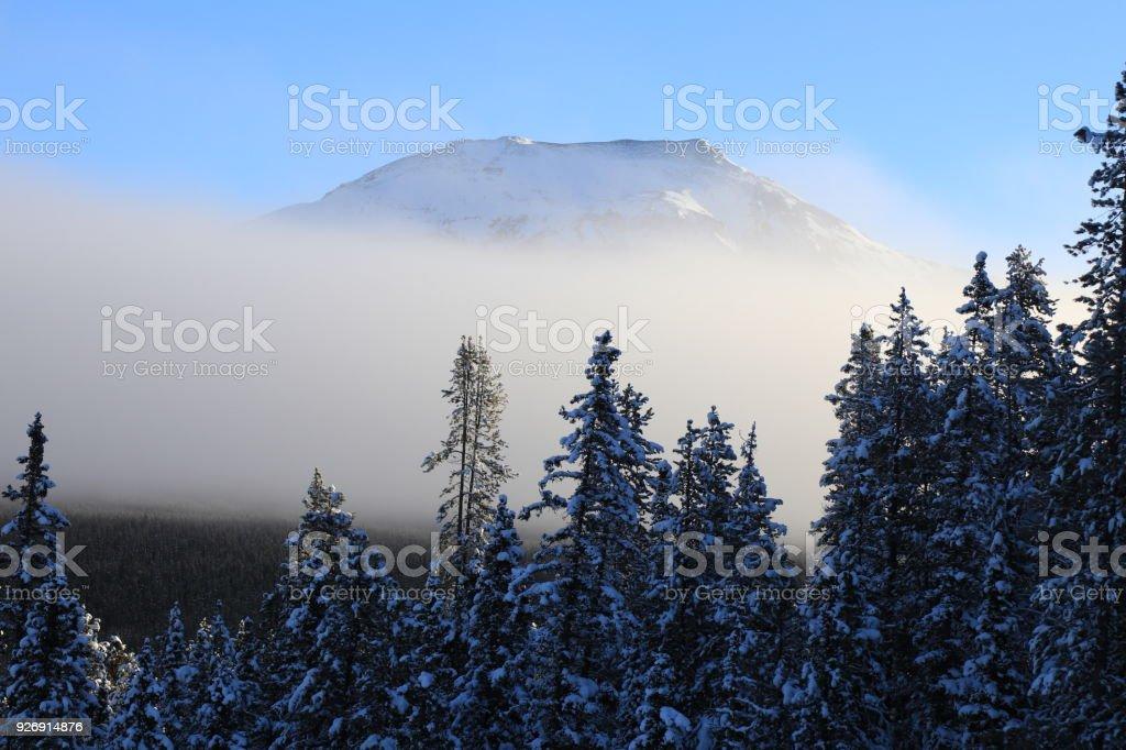 Foggy Winter Scenery in Canada stock photo