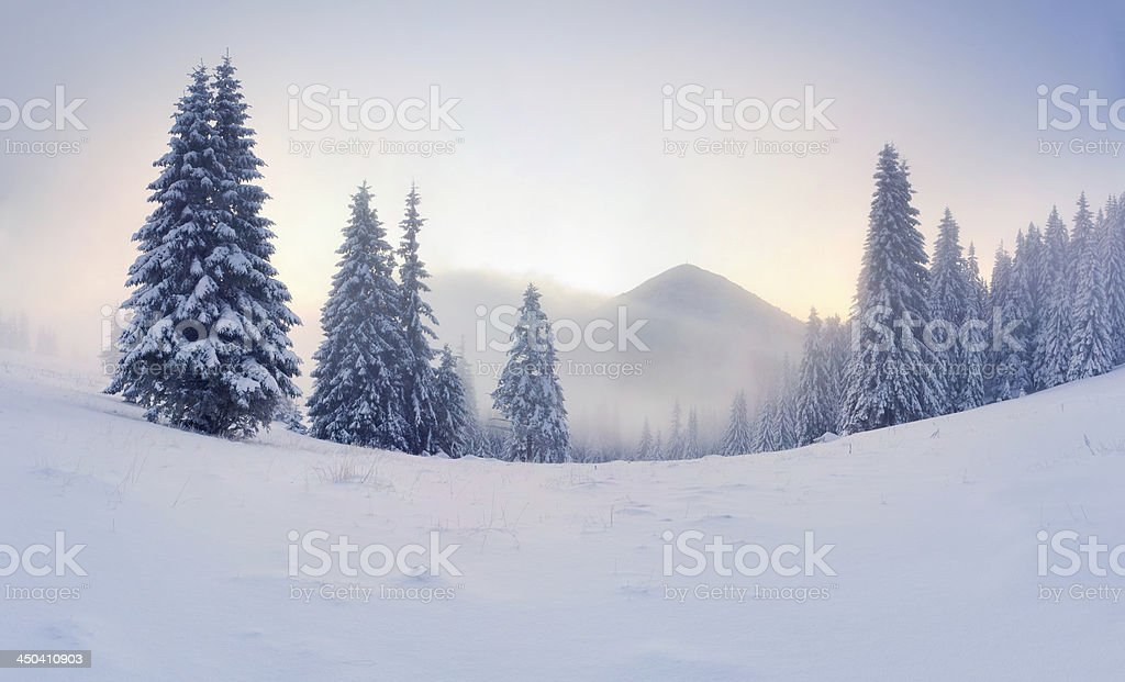 Foggy winter sunrise in the mountains stock photo