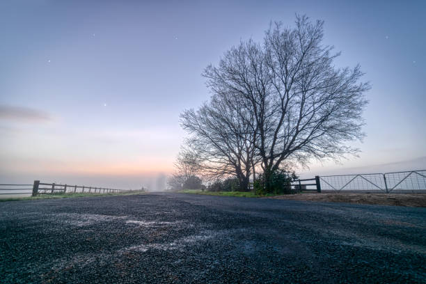 Foggy_morning_colors_early_hours_before_sunrise stock photo