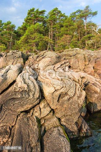 Fold rocks at a beach in beautiful sunlight