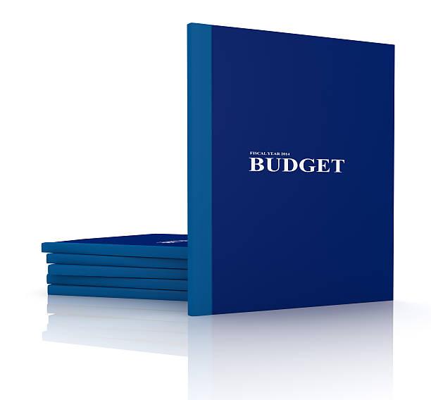 ordner mit budget dokumente - bundeshaushalt 2014 stock-fotos und bilder