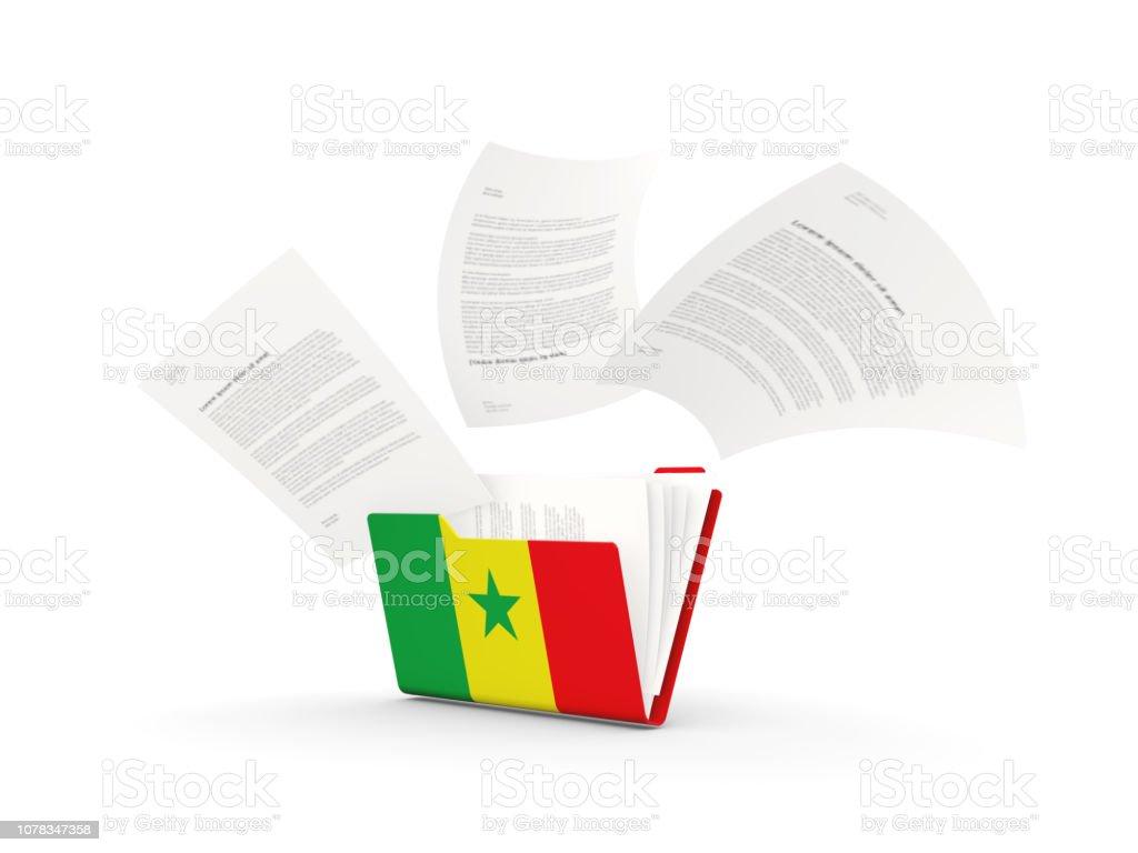 Pasta com bandeira do senegal - foto de acervo