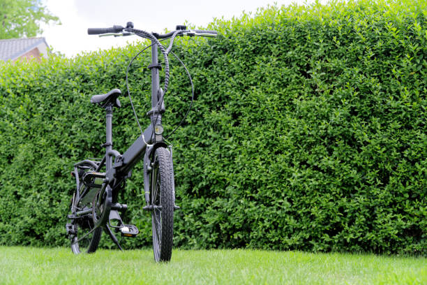 Folding bicycle against green hedge stock photo