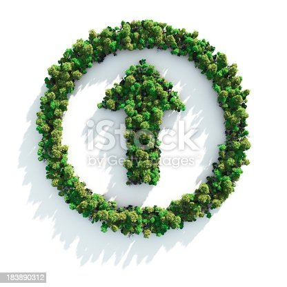 istock Foliage arranged in a circle with an arrow in the middle 183890312
