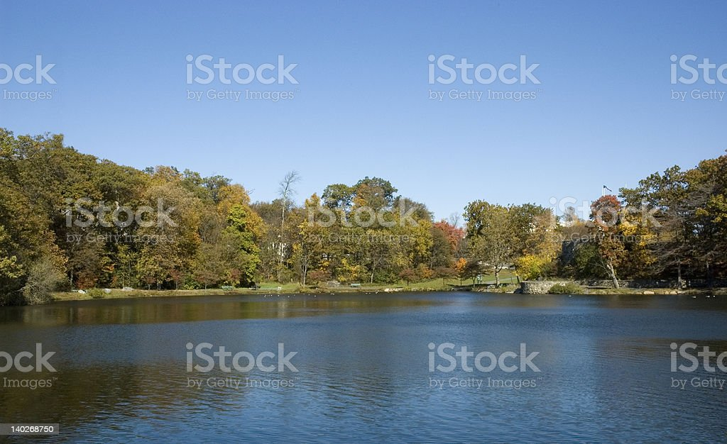 Foliage at the Reservoir. stock photo