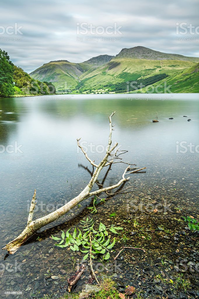Foliage In A Lake With Mountains In Background. stock photo