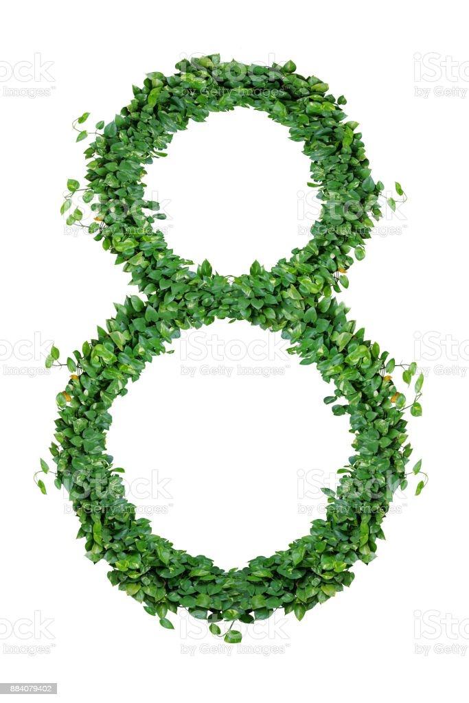 Fotografía de Hojas Número 8 Naturaleza Verde Hojas Alfabeto De ...