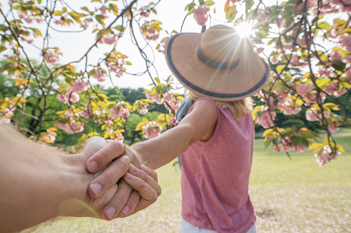 istock Follow me under the cherry blossom, springtime 806217962