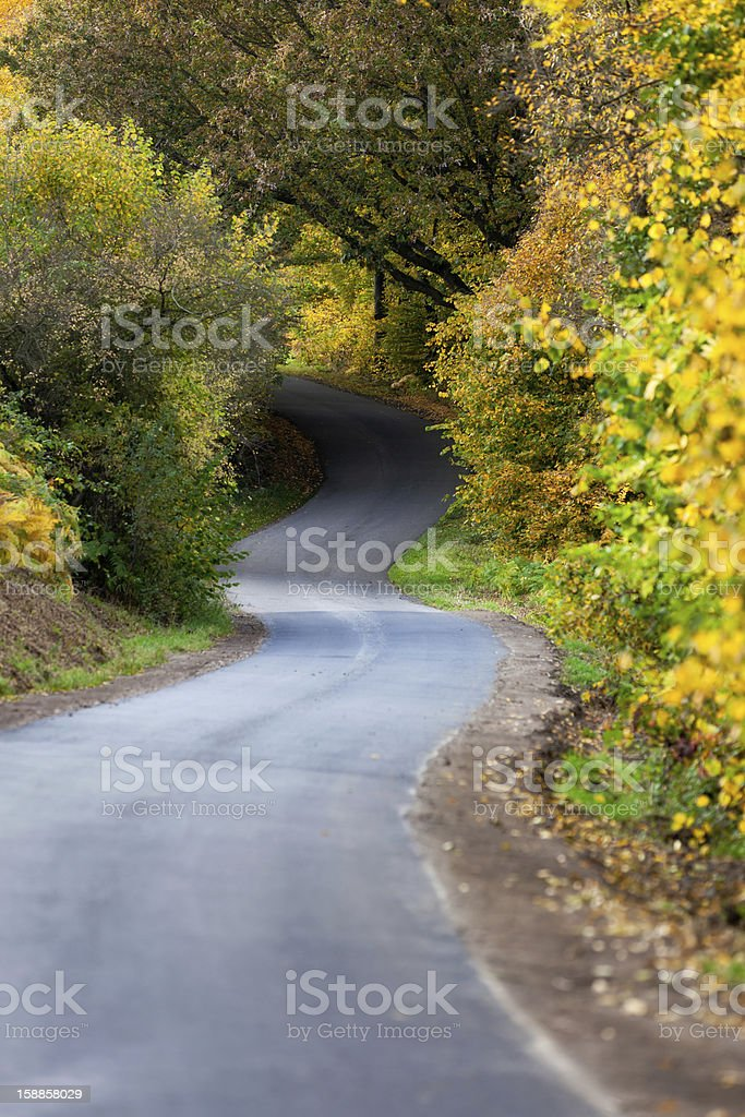 Following a path royalty-free stock photo
