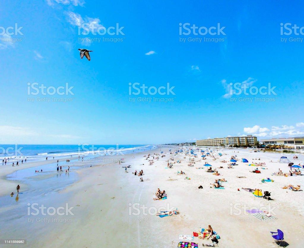 POSTER FASHION GIRLS SWIMSUIT BEACH NORTH CAROLINA TRAVEL VINTAGE REPRO FREE S//H
