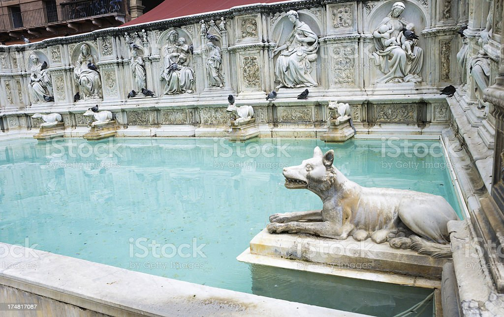 Fonte Gaia She Wolf royalty-free stock photo