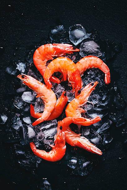 음식 배경, 냉동상태의 조리된 새우요 아이스 - 프론 해산물 뉴스 사진 이미지