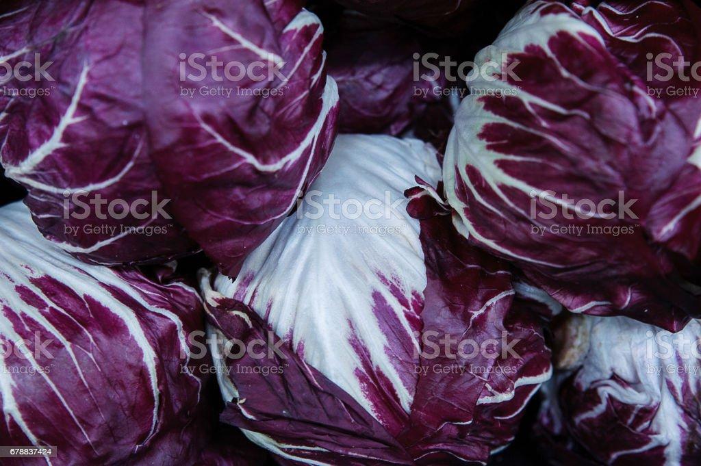 Achicoria de fondo - púrpura de alimentos - foto de stock