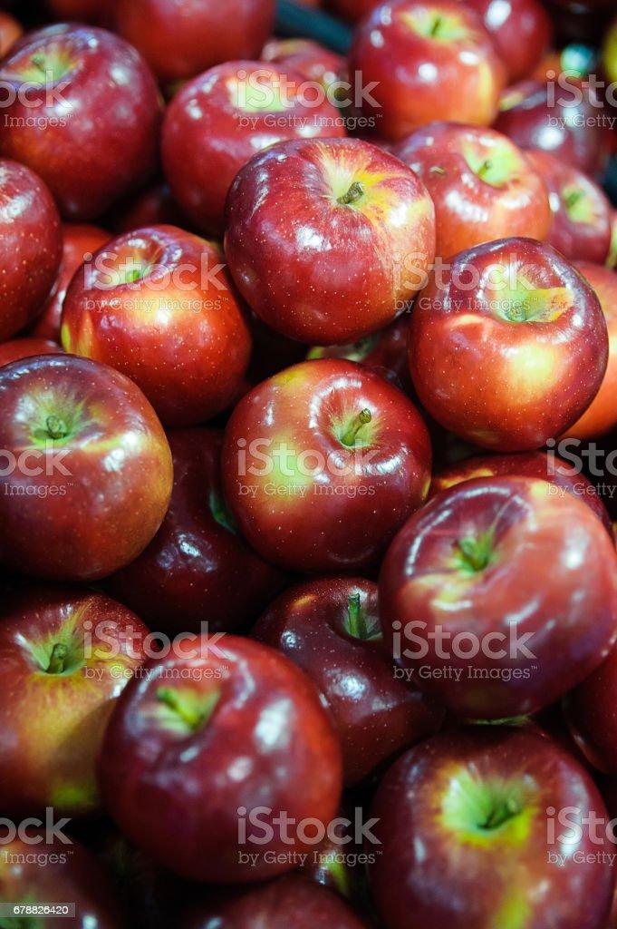 Gıda arka plan - parlak kırmızı elma, malus domestica royalty-free stock photo