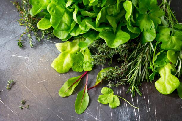 Fond de nourriture. Diverses herbes fraîches de l'été sur fond de Pierre sombre. Alimentation, concept de nourriture végétarienne. Copiez l'espace. - Photo