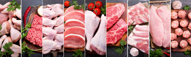 food collage of various fresh meat and chicken - meat imagens e fotografias de stock