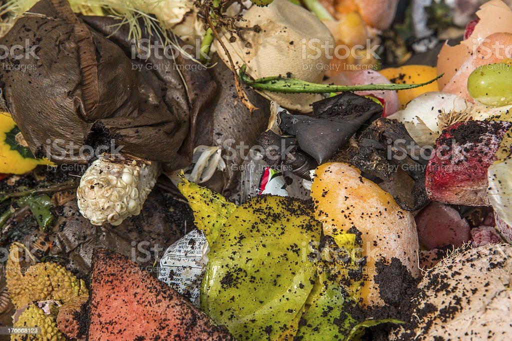 Food composting royalty-free stock photo