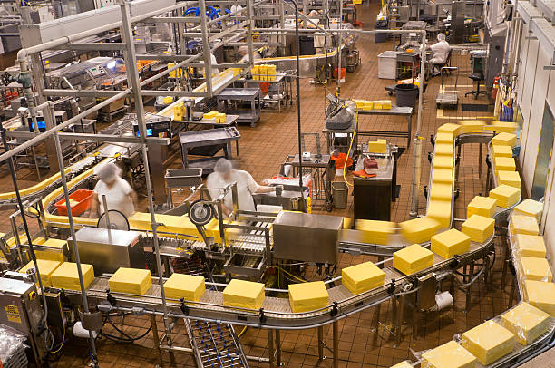 Food Factory - Packaging Cheese stock photo