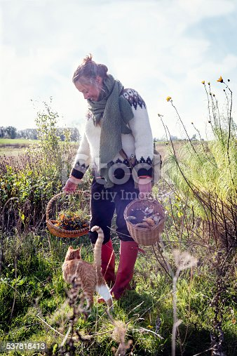 Food forager with her haul of foraged food in her baskets. Including field mushrooms,honey mushrooms,berries and nuts.Food foraging has become popular in recent years as chefs have turned to foraged food to produce local and seasonal menu's. Photographed in Denmark.