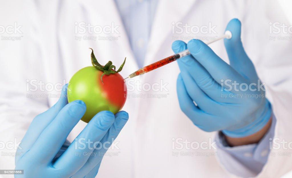 Conceito de modificação genética de alimentos - foto de acervo