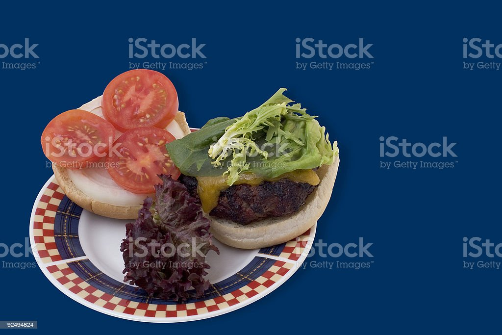 Food: Grilled Hamburger on a Bun royalty-free stock photo
