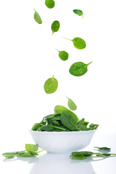 Food in motion, spinach leaves flying stock photo
