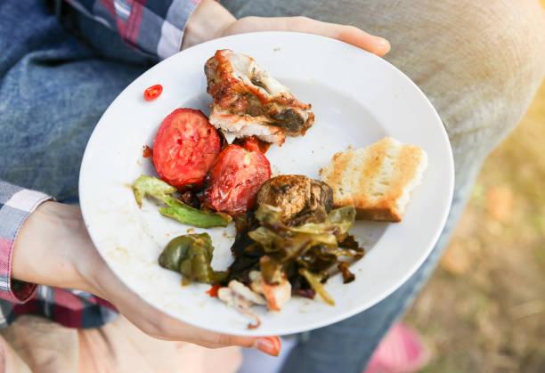 matrester på plattan. grönsaker, kött och bröd. - tallrik uppätet bildbanksfoton och bilder