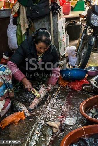 Food market, Woman seller descaling and selling fish, Dali Old Town, Yunnan province, China
