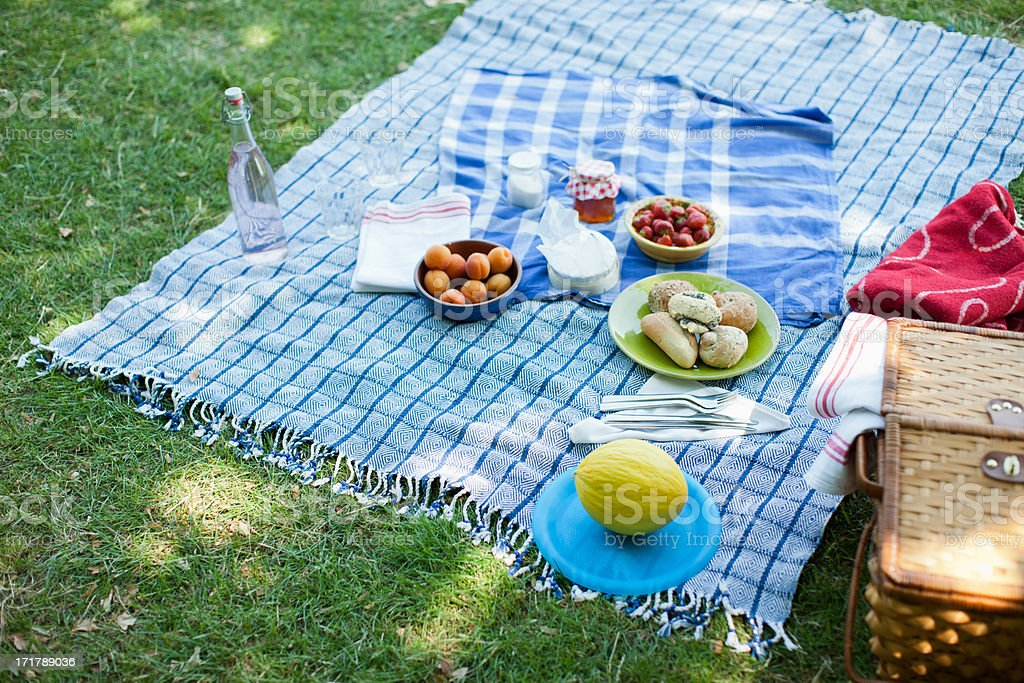 Food on blanket in grass stock photo