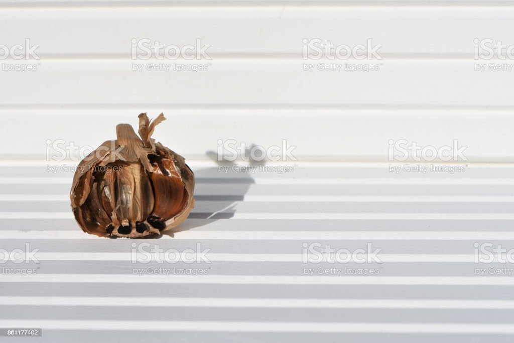 food photography image of black garlic bulb and cloves in sunlight on natural white wood background and taken on South coast England UK stock photo