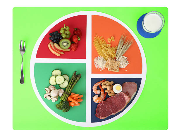 Royalty free food pyramid pictures images and stock photos istock food plate nutrition chart split into four wedges stock photo forumfinder Choice Image