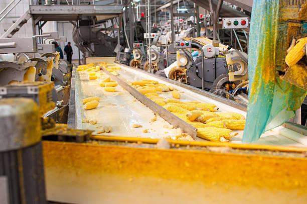 food Processing stock photo
