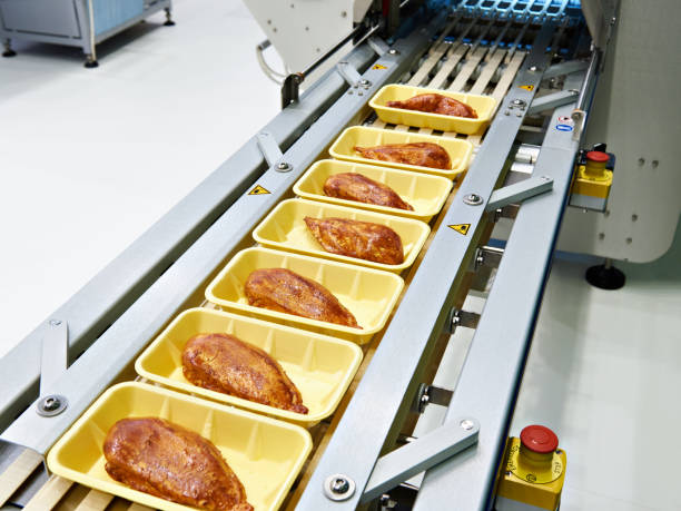food products meat chicken in plastic pack on conveyor - carne branca imagens e fotografias de stock